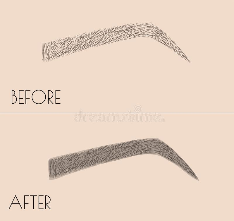 Permanente make-up Correctie van de vorm en het kleuren van de wenkbrauwen Salonprocedure Microblading vector illustratie