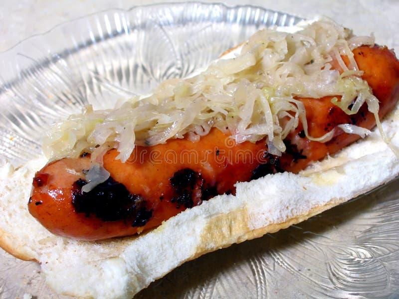 Perrito caliente y sauerkraut imagen de archivo