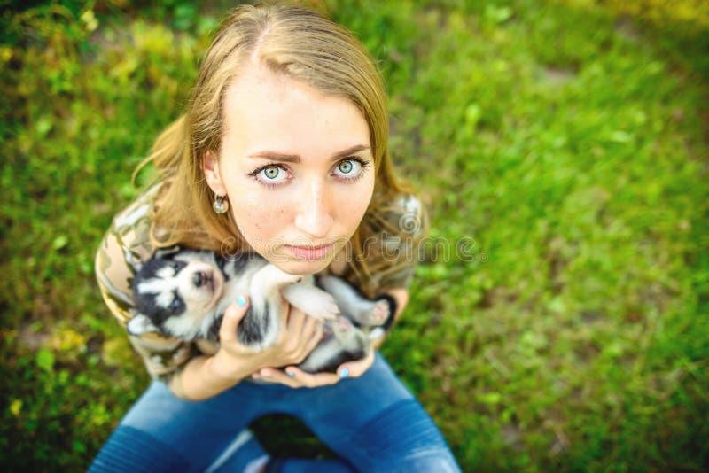 Perrito fornido bastante pequeño al aire libre en las manos de la mujer imagen de archivo