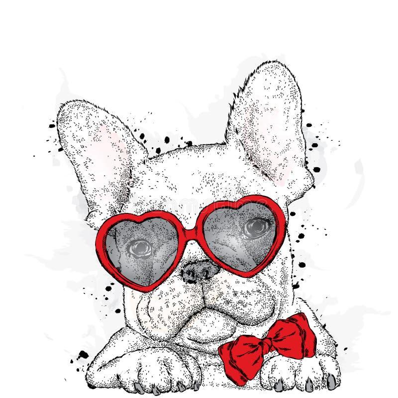 Perrito lindo con el corazón de los vidrios Día del `s de la tarjeta del día de San Valentín imágenes de archivo libres de regalías