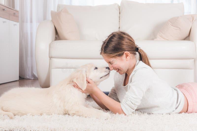 Perrito sonriente del perro perdiguero de la tenencia de la muchacha fotografía de archivo
