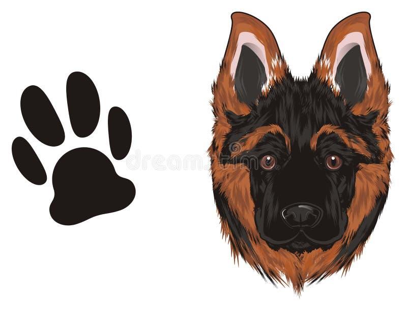 Perrito y huella libre illustration
