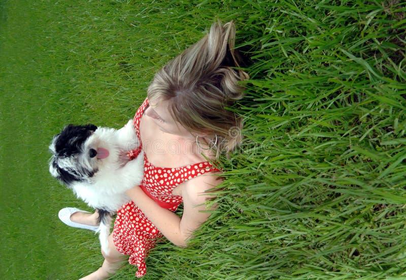 Perrito y muchacha bonita en hierba fotografía de archivo