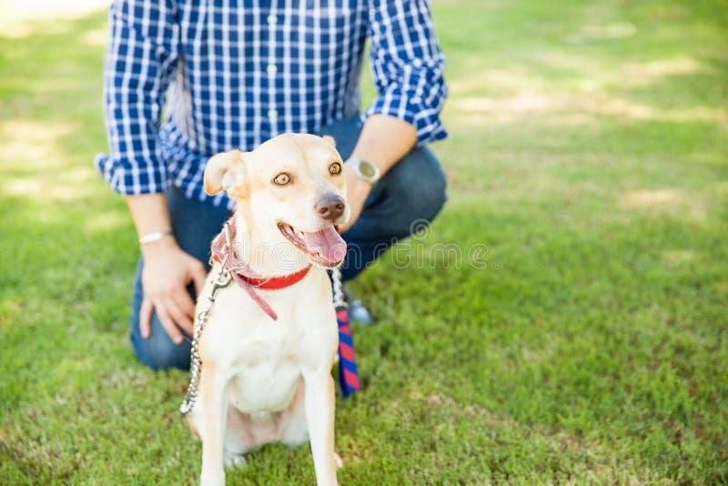 Perro amistoso y su dueño en el parque fotografía de archivo libre de regalías