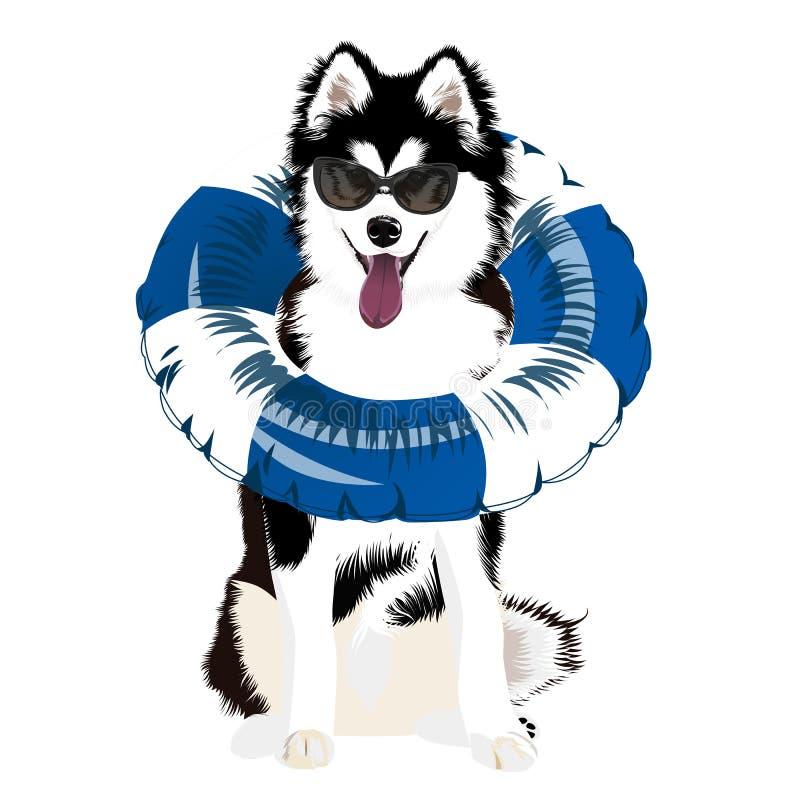 Perro Anillo de la nadada Juguete de goma inflable libre illustration