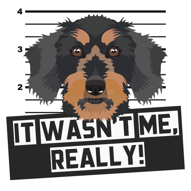 Perro basset de la fotograf?a de detenido del Mugshot libre illustration