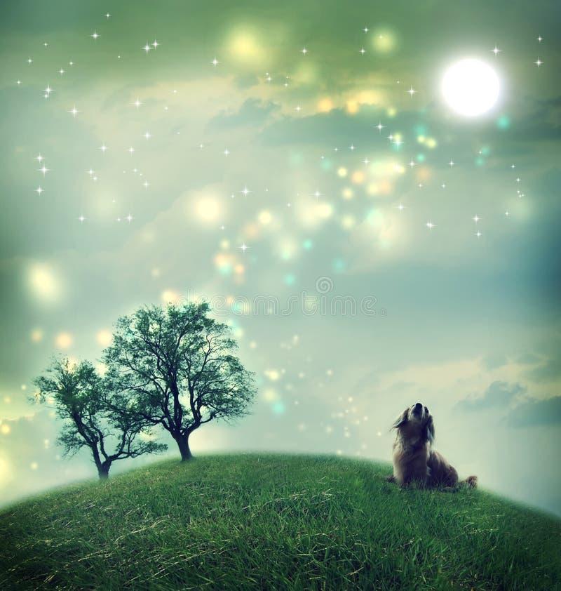 Perro basset en un paisaje mágico foto de archivo libre de regalías