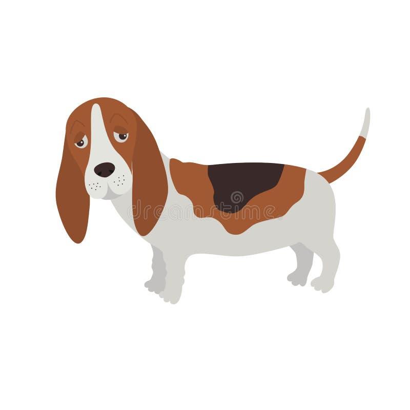 Perro Basset Hound libre illustration