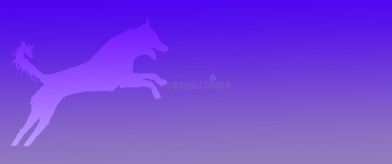 Perro casero del fondo del jefe que salta en fondo azul de la pendiente libre illustration