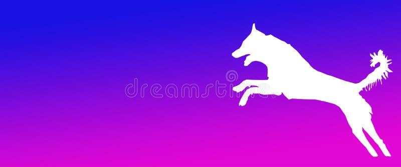 Perro casero del fondo del jefe que salta en fondo magenta azul de la pendiente stock de ilustración