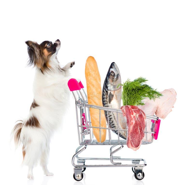 Perro con la carretilla de las compras por completo de la comida sobre la imagen - una cita del presidente John F fotografía de archivo libre de regalías