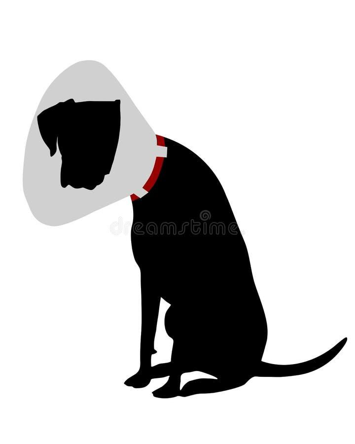 Download Perro Con La Gallineta De Collar Ilustración del Vector - Imagen: 16365250