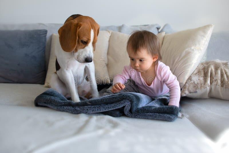 Perro con un bebé lindo en un sofá E imagen de archivo libre de regalías