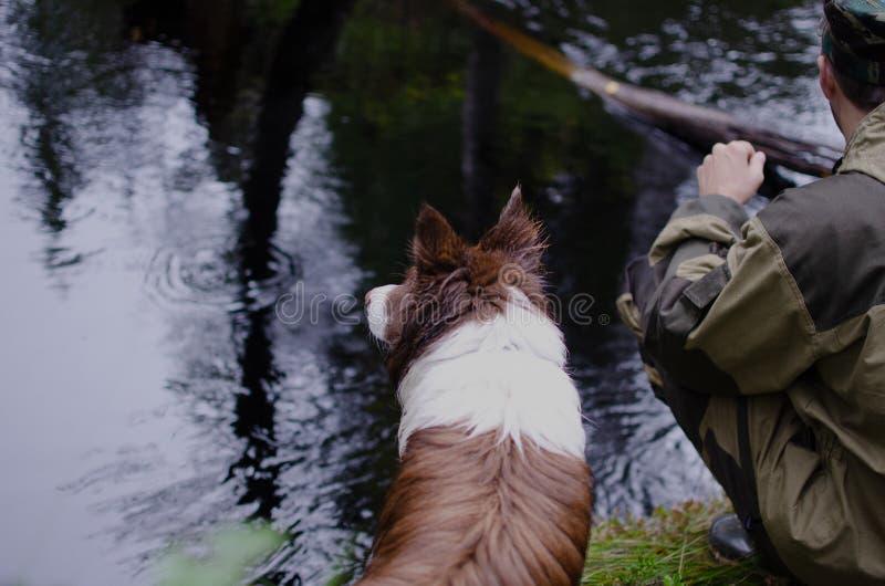 Perro con un hombre por el lago cierre marr?n del border collie para arriba imagen de archivo libre de regalías