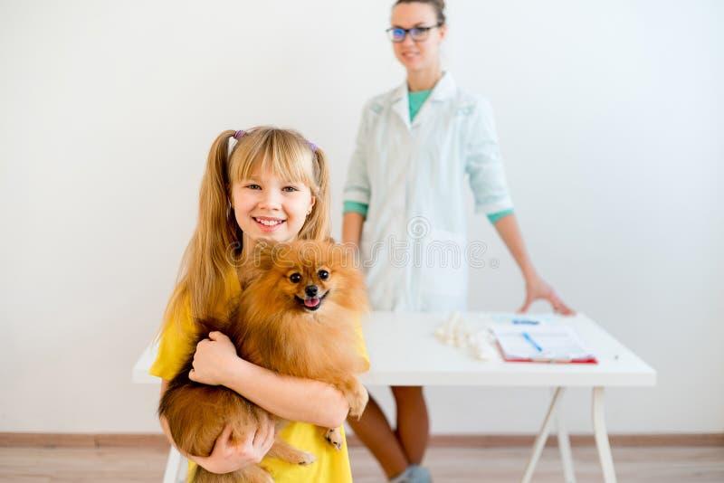 Perro con un veterinario imagen de archivo