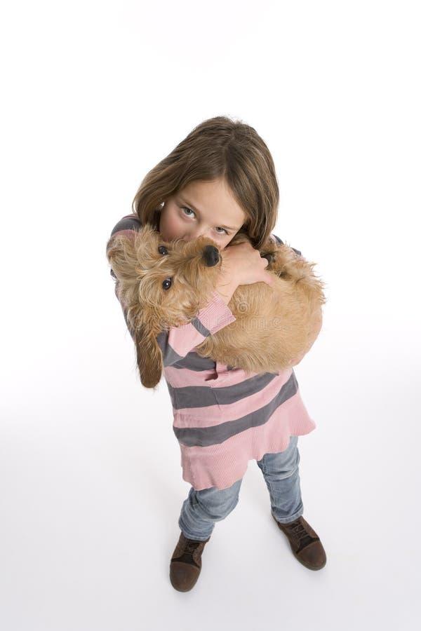 Perro de animal doméstico de la niña que lleva fotografía de archivo