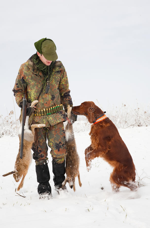 Perro de caza que trae la presa al cazador imagenes de archivo