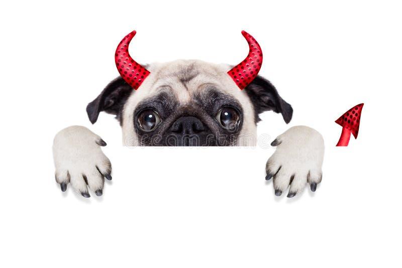 Perro de diablo de Halloween imagen de archivo libre de regalías