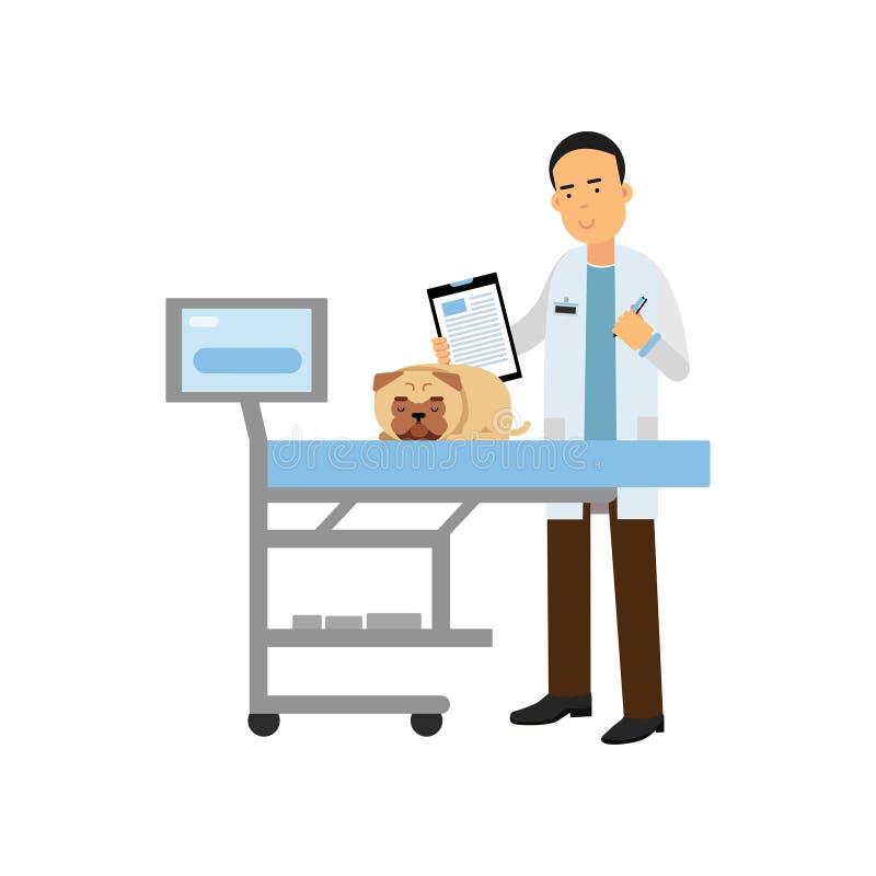 Perro de examen del doctor veterinario de sexo masculino alegre en la clínica del veterinario, ejemplo colorido del vector de la  ilustración del vector