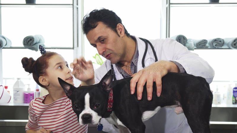 Perro de examen del veterinario maduro profesional de una niña en la clínica imagen de archivo libre de regalías