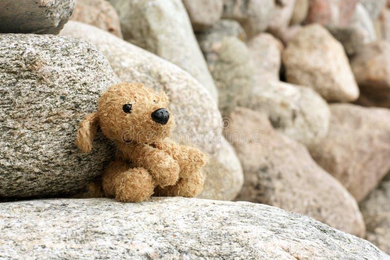 Perro de juguete viejo de la felpa abandonado en una piedra imagen de archivo libre de regalías
