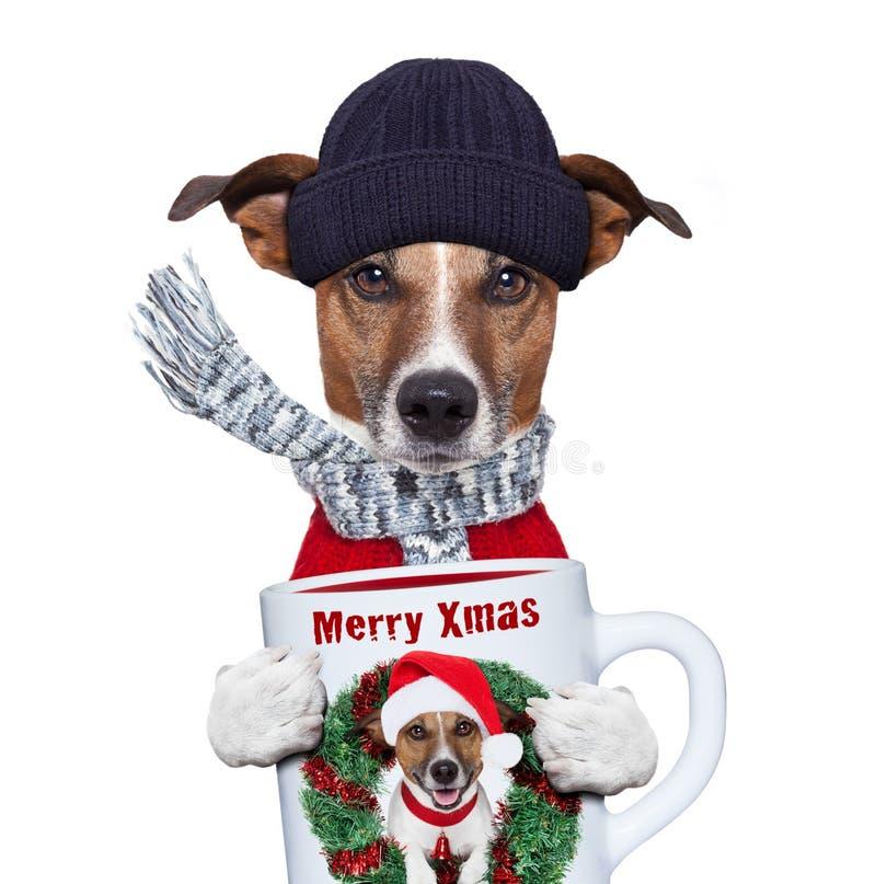 Perro de la Navidad con la taza foto de archivo