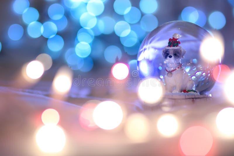 Perro de la Navidad del globo de la nieve, zodiaco animal chino 2018 es el sí imagen de archivo