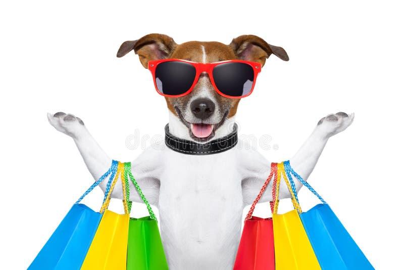 perro de las compras imagenes de archivo