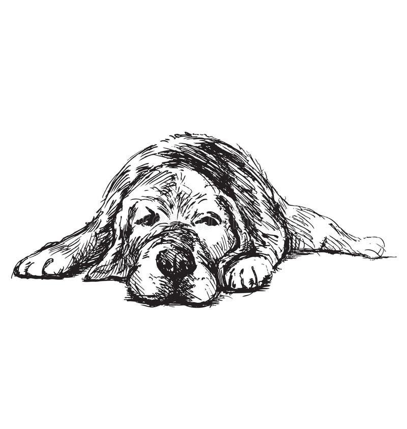 Perro de mentira del bosquejo de la mano imágenes de archivo libres de regalías