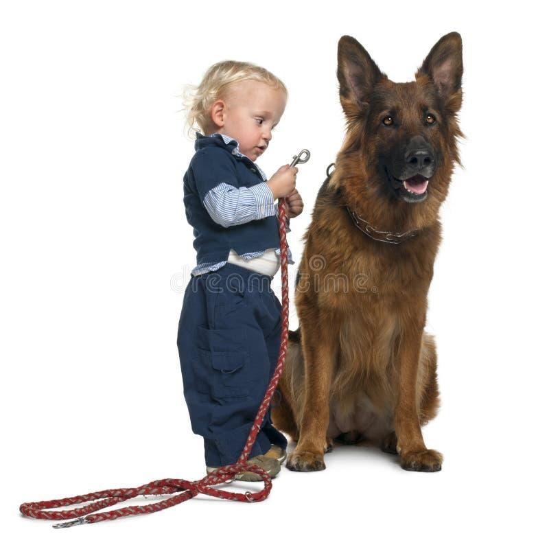 Perro de pastor alemán con el muchacho que asocia el correo imagen de archivo libre de regalías