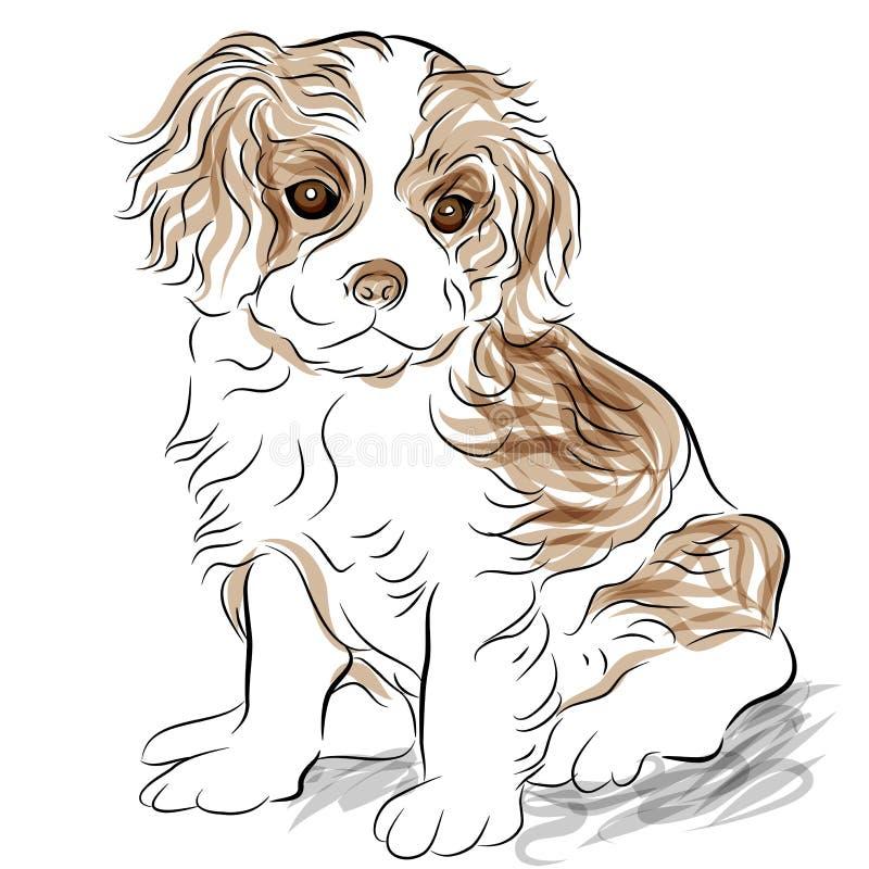Perro de perrito arrogante presentado del perro de aguas de rey Charles stock de ilustración