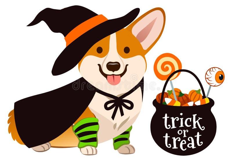 Perro de perrito del corgi de Halloween vestido como bruja, el sombrero que lleva y cabo ilustración del vector