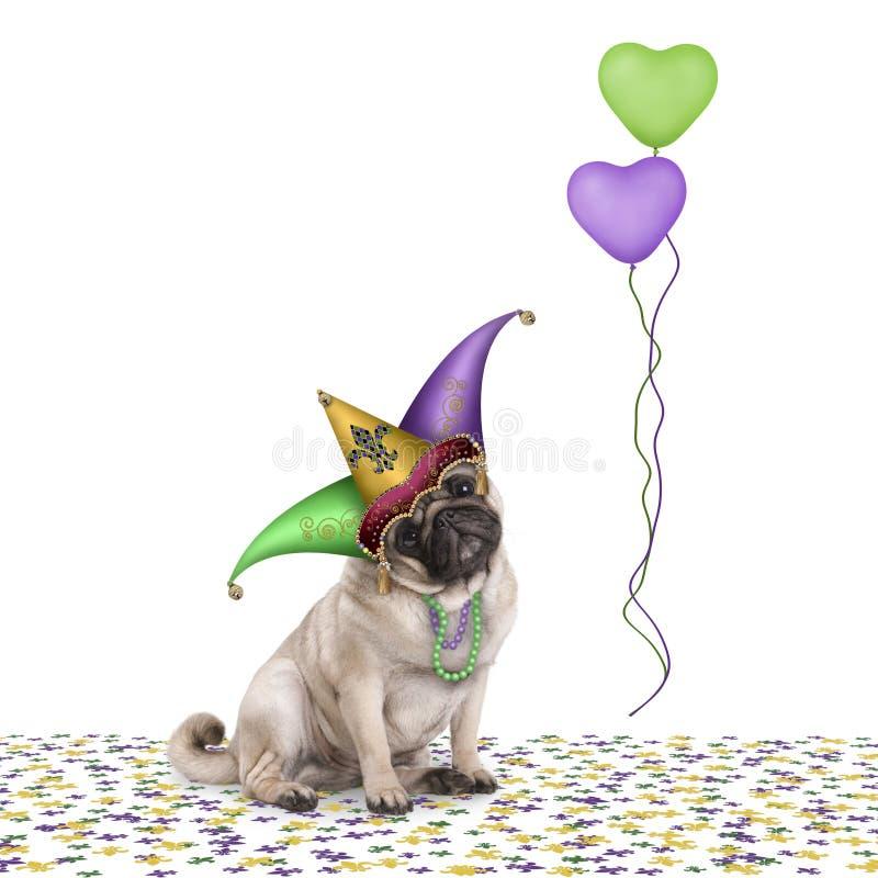 Perro de perrito lindo del barro amasado del carnaval del carnaval que se sienta en confeti con el sombrero y los globos del bufó foto de archivo
