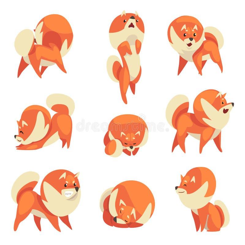 Perro de Pomerania lindo en diversas actitudes fijadas, ejemplo divertido de Pomeranian del vector del personaje de dibujos anima stock de ilustración