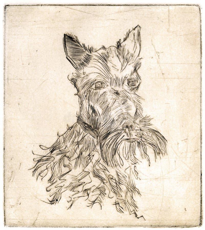 Perro De Terrier - Sepia Antigua Stock de ilustración - Ilustración ...