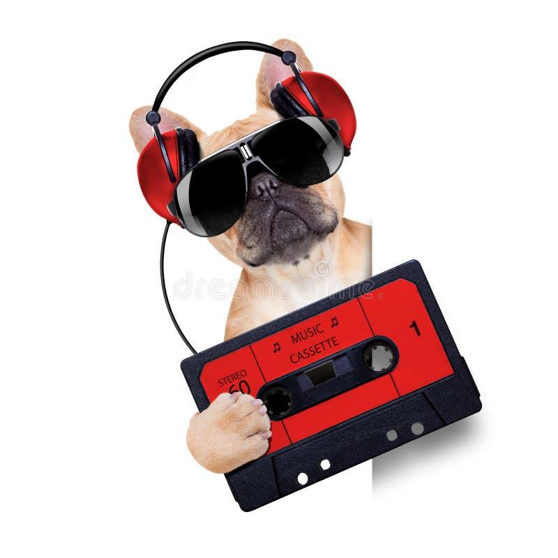 Perro del disco de DJ imágenes de archivo libres de regalías
