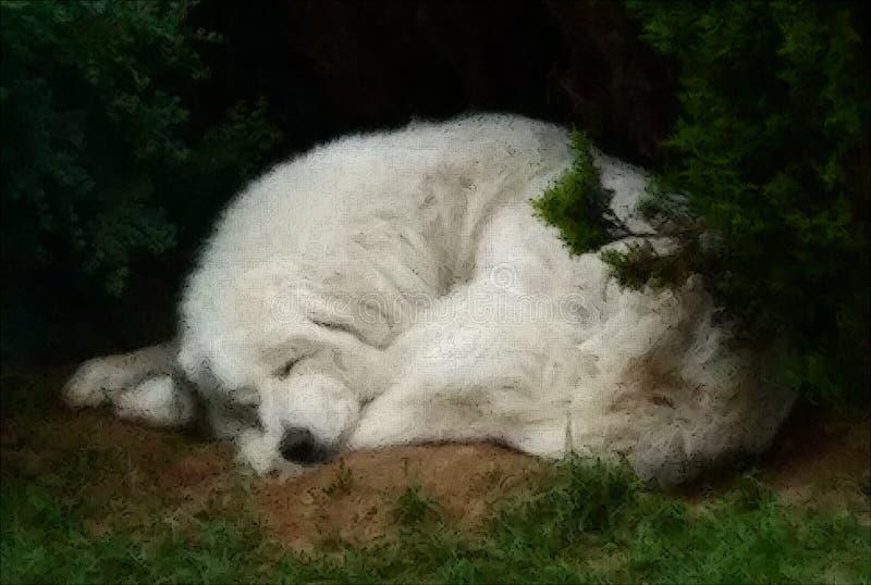 Perro del dormilón foto de archivo libre de regalías