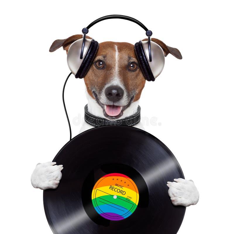 Perro del expediente de vinilo del auricular de la música fotos de archivo
