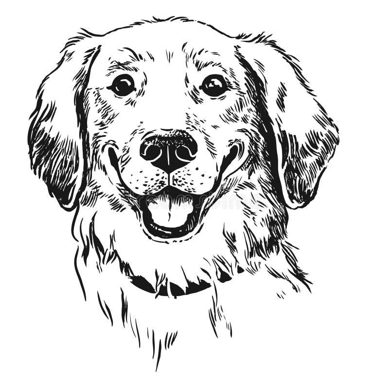 Perro del golden retriever, sonriendo con la lengua hacia fuera Vinta de la pluma y de la tinta ilustración del vector
