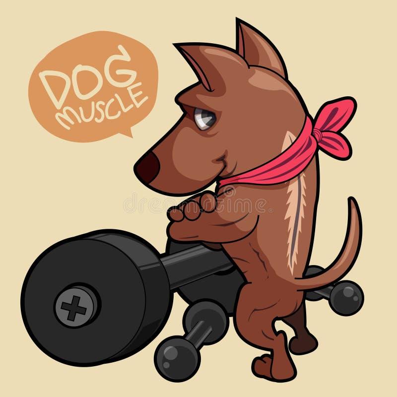Perro del músculo fotografía de archivo