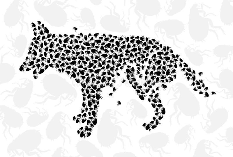 Perro del rasguño con las pulgas ilustración del vector