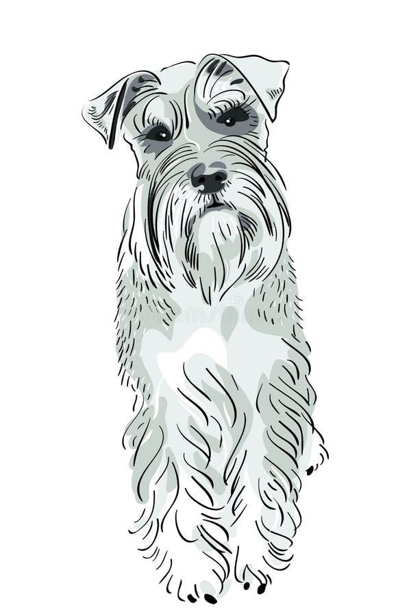 Diseño Plano Del Icono Del Perro Del Perro De Montaña De Bernese
