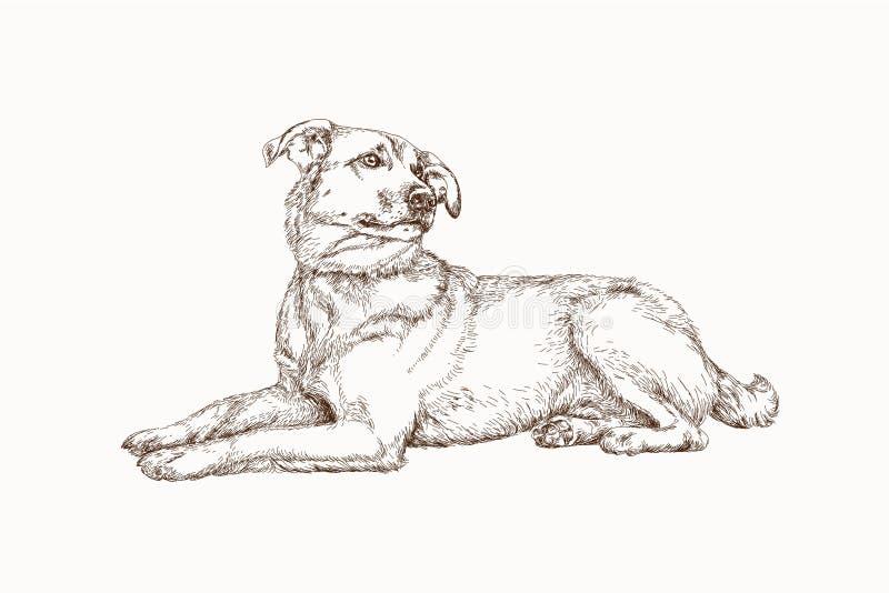 Perro dibujado mano de la calle fotografía de archivo