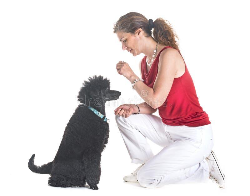 Perro, dueño y obediencia foto de archivo