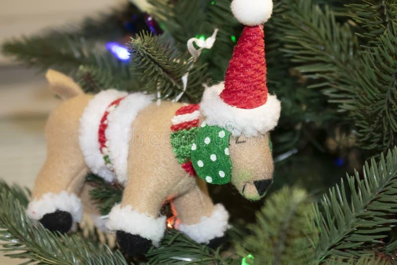 Perro en el ornamento de la Navidad del traje de santa en árbol - con el sombrero y bufanda y poka punteó los oídos - foco select fotografía de archivo libre de regalías