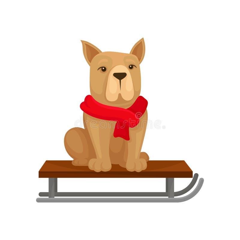 Perro en la bufanda caliente roja que se sienta en el trineo Animal doméstico casero Animal doméstico Regalo de la Navidad Diseño ilustración del vector