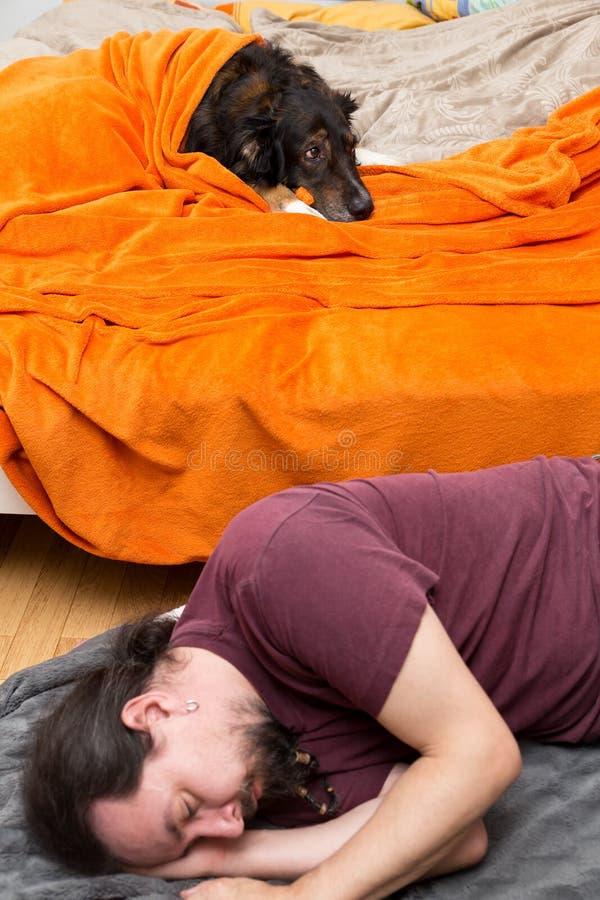 Perro en la cama, hombre que duerme en la tierra fotos de archivo