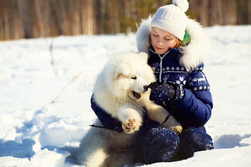 Perro esquimal del samoyedo con el dueño imagen de archivo libre de regalías