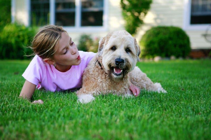 Perro feliz foto de archivo libre de regalías