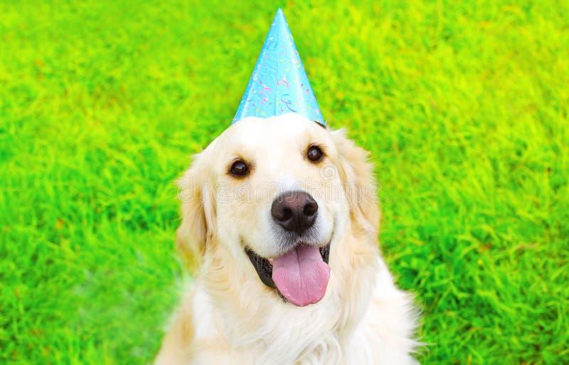 Perro feliz del golden retriever del retrato en el casquillo del papel del cumpleaños que se sienta en hierba verde en verano sol fotografía de archivo libre de regalías